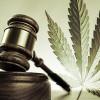 LERA Gateway Chapter to host program on marijuana and the workplace Dec. 6