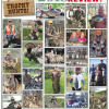 Trophy Hunts: 2018 Year in Review